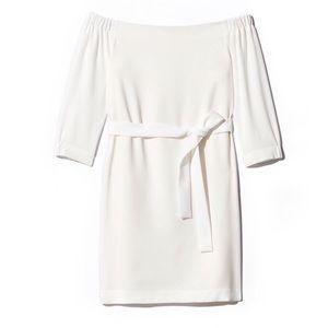🆕 NWT Babaton Brightwell OTS Dress from Aritzia